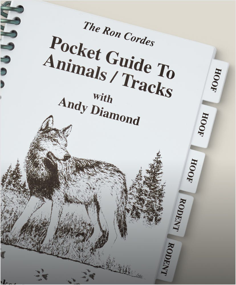 Filson field guides and notebooks
